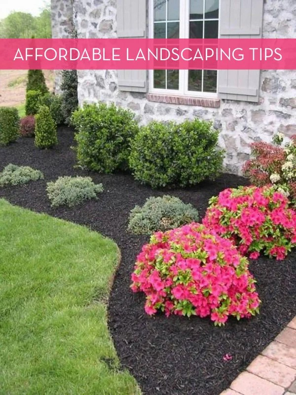 tips landscaping budget