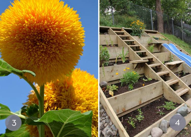 Eye Candy: 10 Unique Backyard Landscaping Ideas (That You Might Be Able To Pull Off)