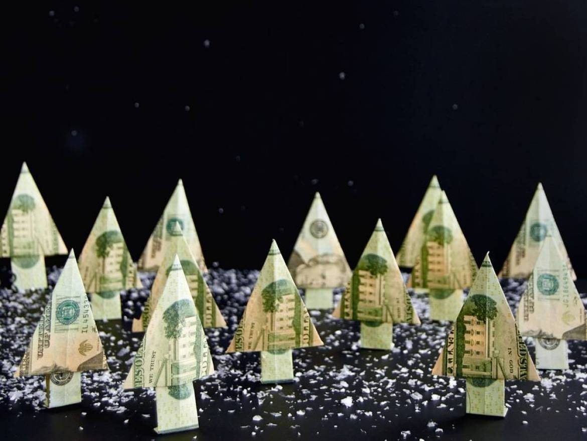 Cash forest - the perfect holiday gift!