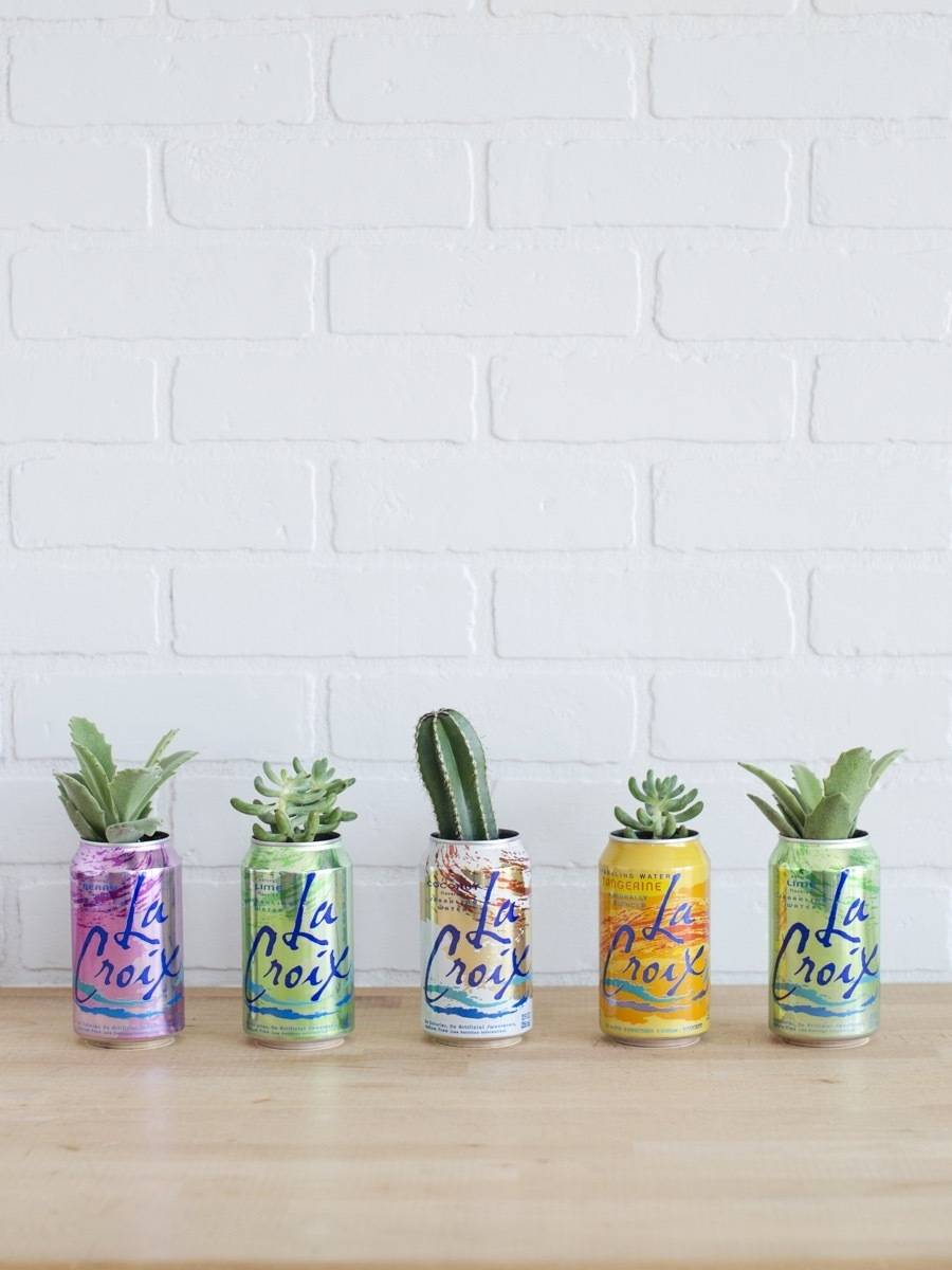 Curbly's Best DIY Projects of 2017: La Croix Can Planters