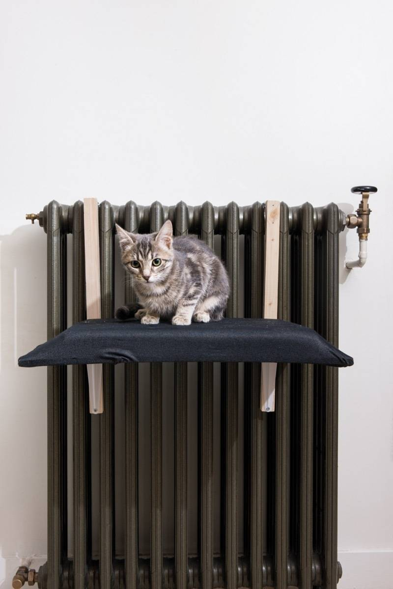 """A cat bed that fits over your radiator - from the new book, """"DIY Projects for Cats & Dogs"""""""