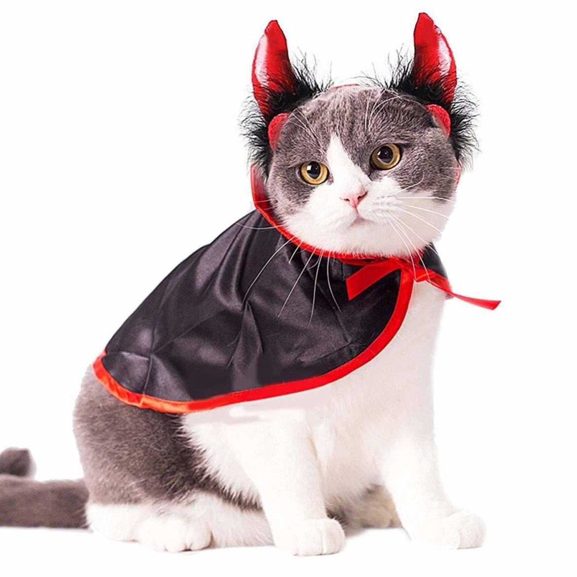 Halloween devil cat costume