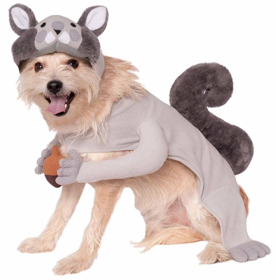 Halloween squirrel dog costume