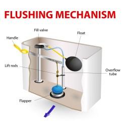 toilet flushing mechanism [ 5066 x 5066 Pixel ]