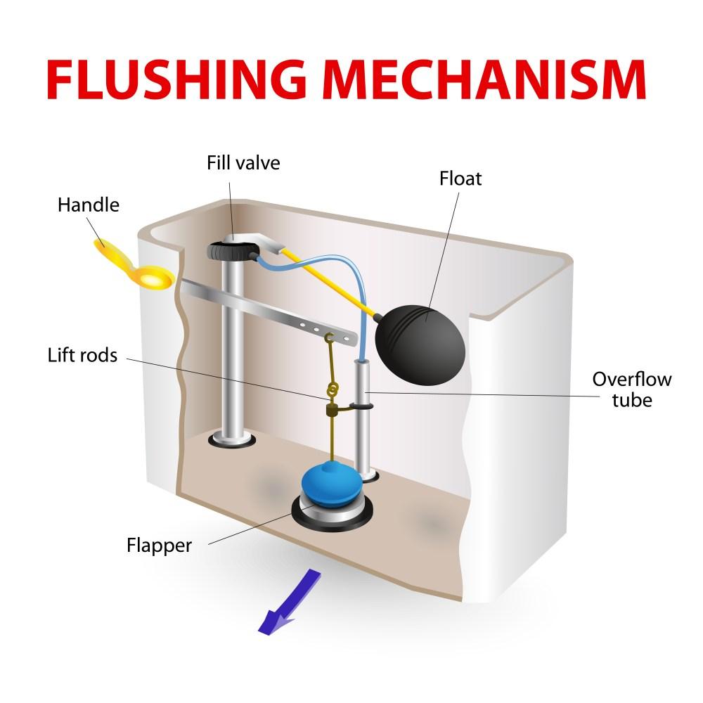 medium resolution of toilet flushing mechanism