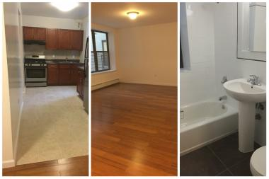 score a newly renovated $980 one-bedroom apartment in the bronx