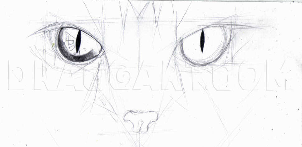How To Draw Cat Eyes Step By Step Drawing Guide By Duskeyes969 Dragoart Com