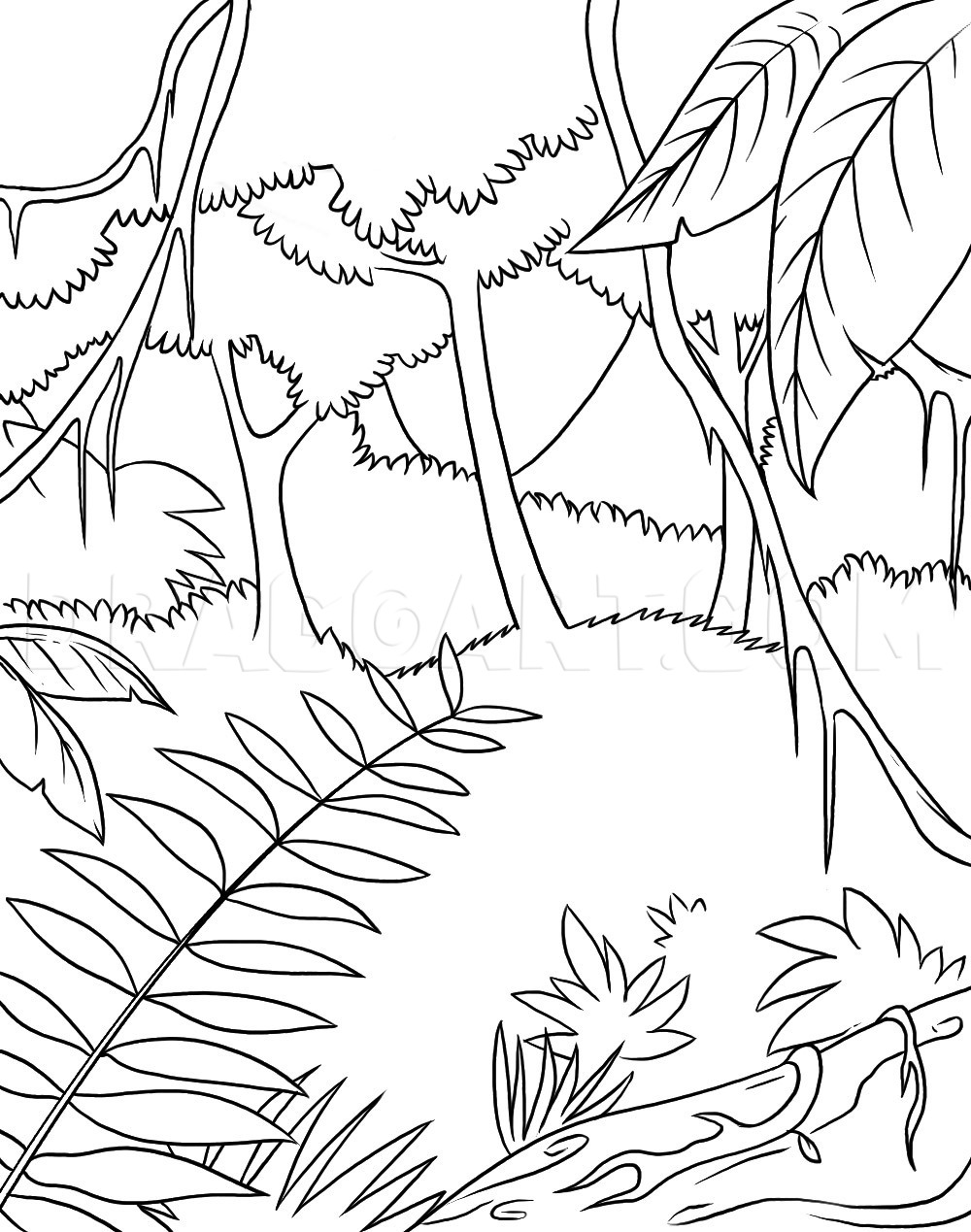 How to Draw Rainforest (Jungle) Scenery for Kids Step by