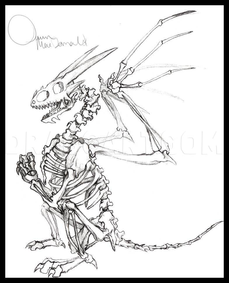 Dragon Skeleton Drawing : dragon, skeleton, drawing, Dragon, Skeleton,, Step,, Drawing, Guide,, Dragoart.com