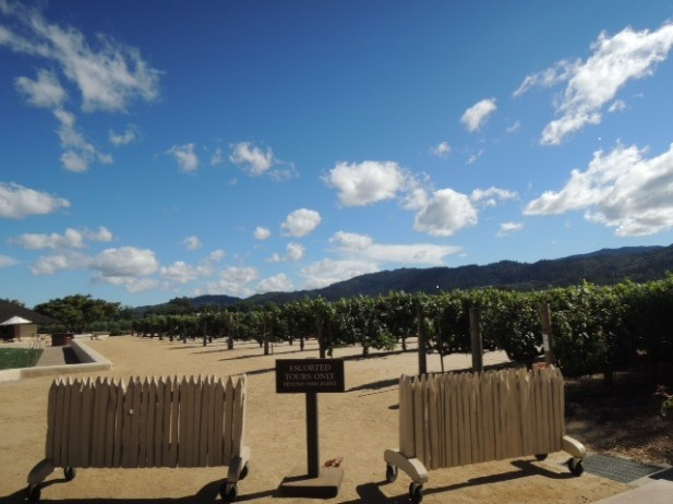 Napa+Valley+Vacation+Packages