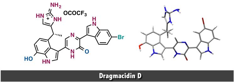 Dragmacidin D