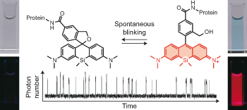 A spontaneously blinking fluorophore based on intramolecular spirocyclization for live-cell super-resolution imaging