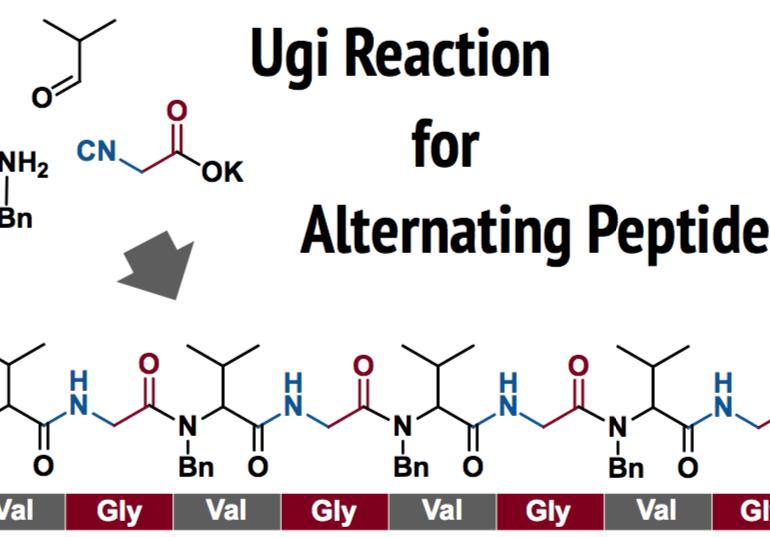 Ugi Reaction for Alternating Peptides