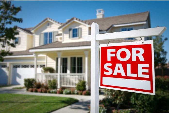 Focus on real estate