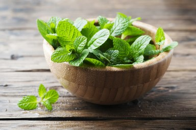 How to Buy and Store Mint | Epicurious
