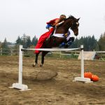 En S Best Halloween Costumes Part Iii Eventing Nation Three Day Eventing News Results Videos And Commentary