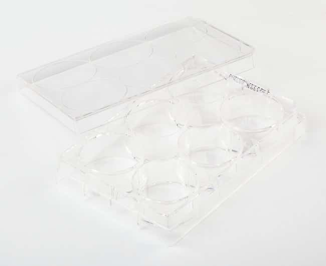 Fisherbrand™ Surface Treated SterileTissue Culture Plates