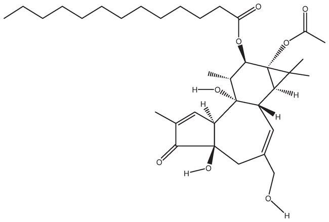 Alfa Aesar™ Phorbol 12-myristate 13-acetate, 99+%