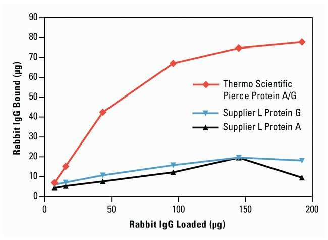 Thermo Scientific™ Gránulos magnéticos de proteína AG