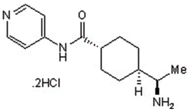 Y-27632 dihydrochloride, Tocris Bioscience :Chemicals