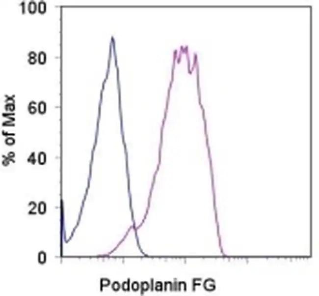 Podoplanin Rat anti-Human, Functional Grade, Clone: NZ-1.3