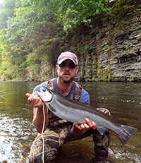 Steelhead on Fishidy