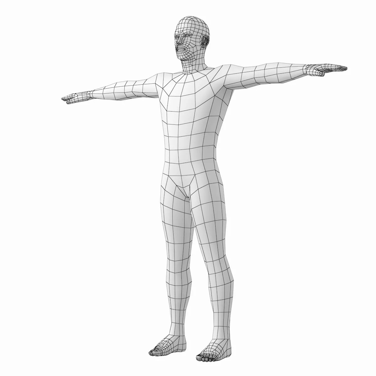 Male And Female Base Mesh In T Pose 3d Model