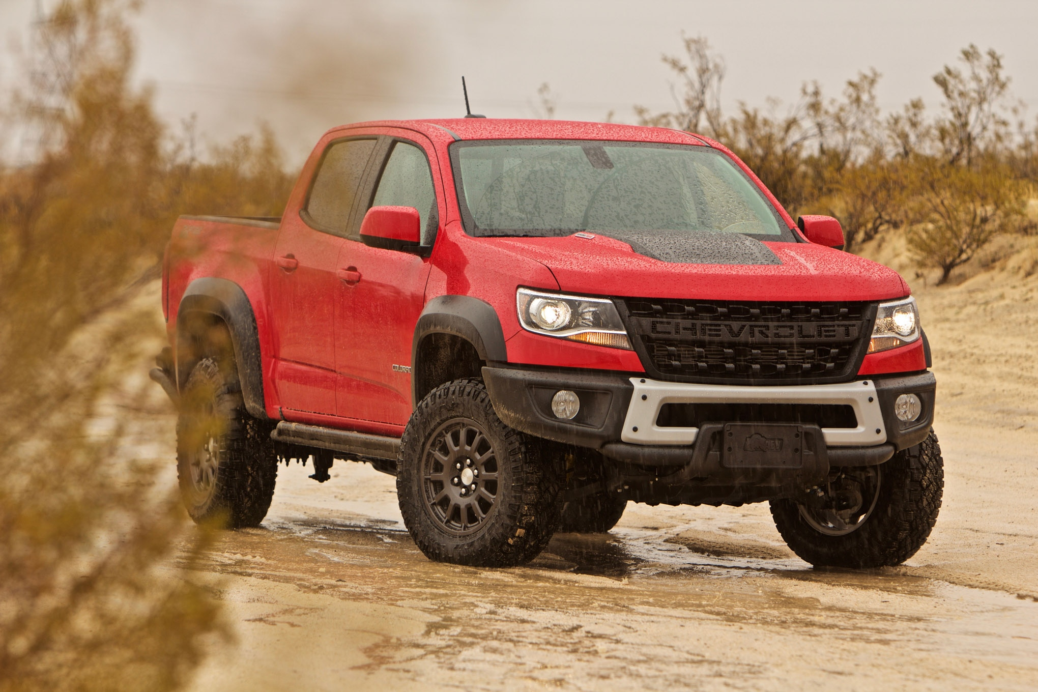 hight resolution of bison in a blizzard snowy muddy fun with the 2019 chevy colorado zr2 bison