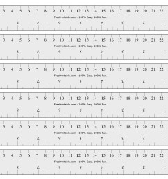 Measurement Worksheets Inches With Ruler   Printable Worksheets and  Activities for Teachers [ 1701 x 2201 Pixel ]