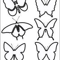 Butterfly Stensils