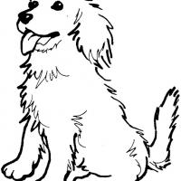 Printable golden retriever coloring pages 9jasports