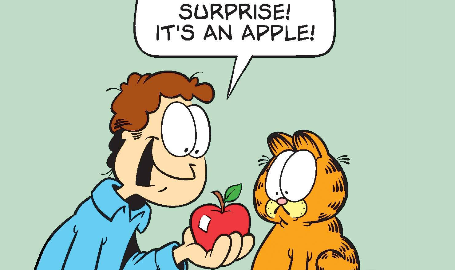 Image result for garfield cartoon