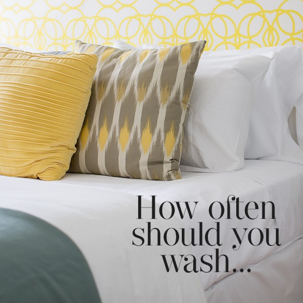 How Often Should You Wash Your Pillows?  Cleaning Tips
