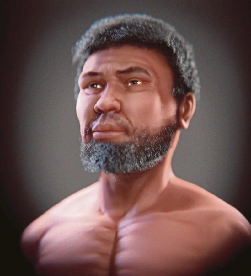 Perak Man, rangka manusia tertua berusia 11,000 tahun yang ditemukan 30 tahun lepas di Lembah Lenggong, Perak, kini mempunyai 'wajah' lakaran, yang siap pada 19 Januari lepas. FOTO BERNAMA