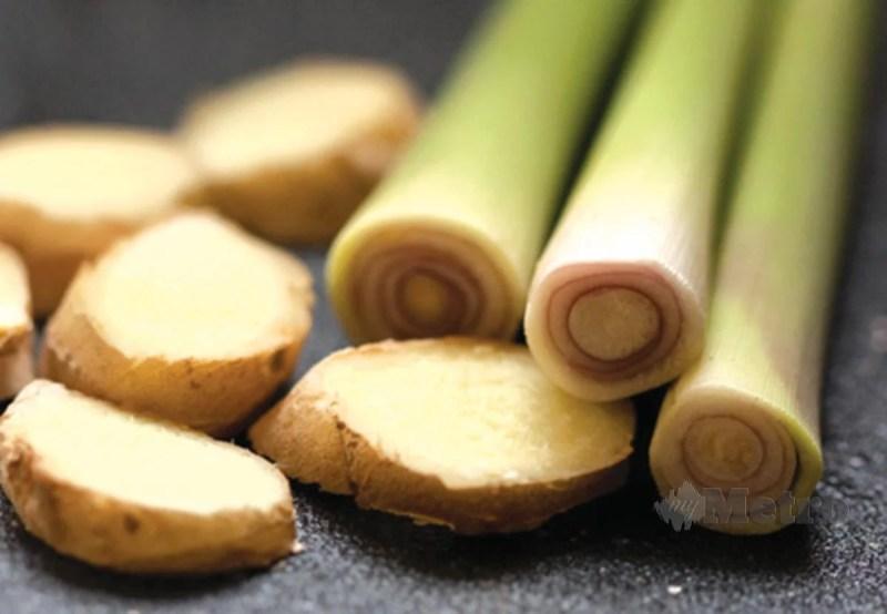 HALIA dan serai ramuan tradisi penting dalam perawatan tradisional.