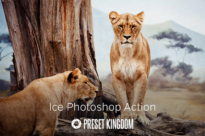 Free Ice Photoshop Action