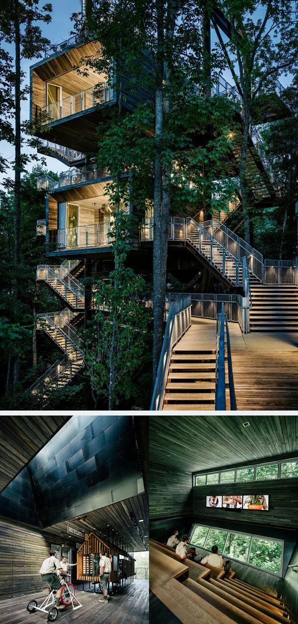 экологичный дом на дереве