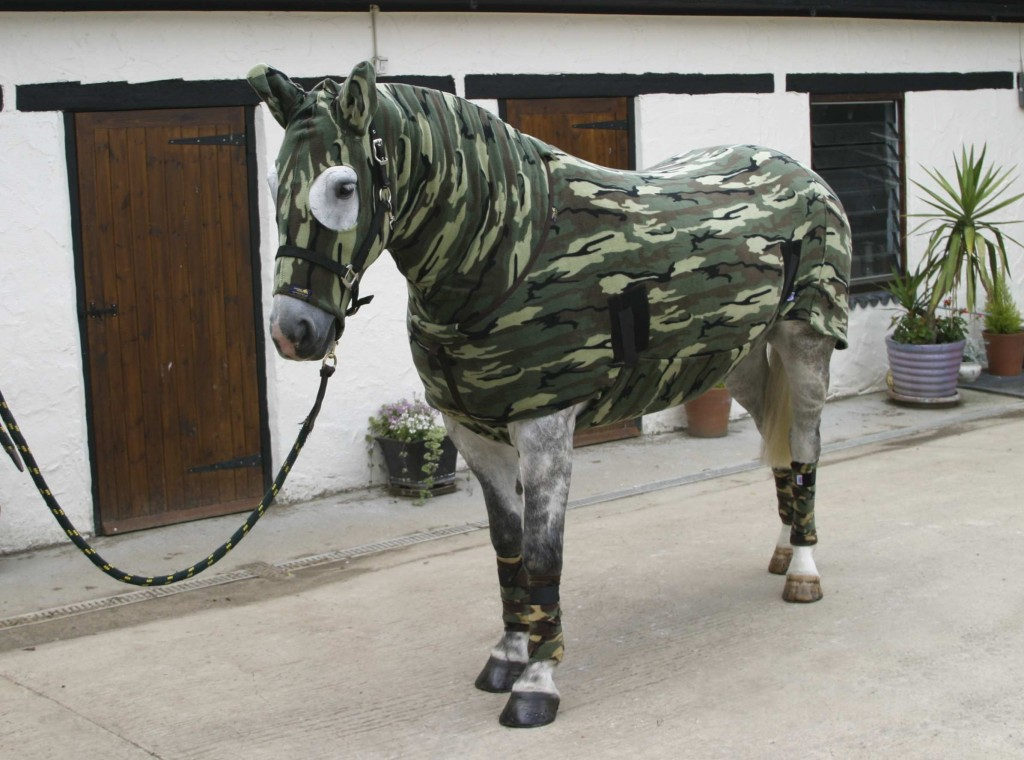 22 Equine Fashion Statements  HORSE NATION