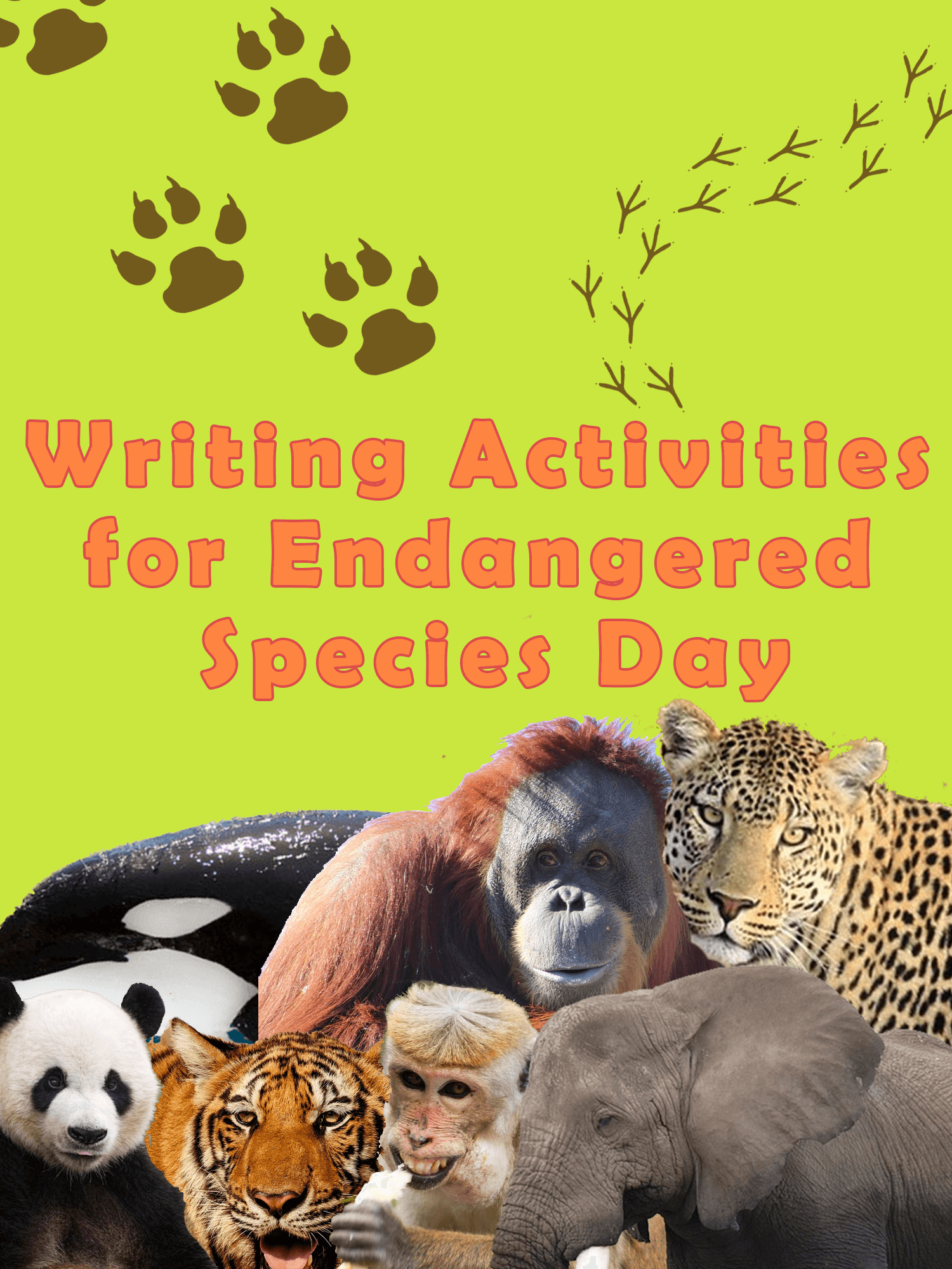 6 Writing Activities For Endangered Species Day
