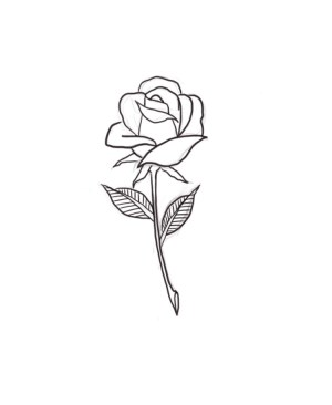rose drawing tattoo gea patricia