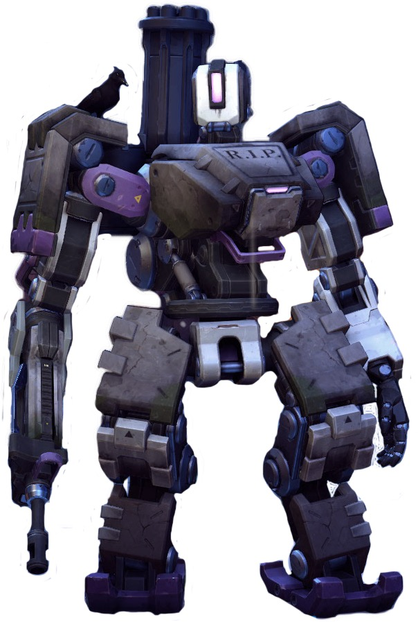 Bastion Blizzcon Skin : bastion, blizzcon, Blizzcon, Bastion, NaturalSkins