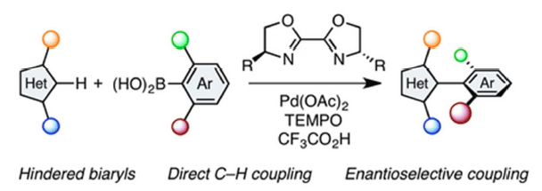 Hindered Biaryls by C–H Coupling: Bisoxazoline-Pd Catalysis Leading to Enantioselective C–H Coupling
