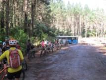 07-redwoods-mountain-bike
