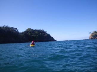 11-motutohe-island