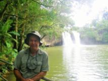 Bingil Bay 3 Mena Creek falls