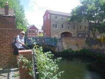 Norwich-walk-5