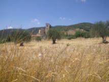 Montalcino-to-Castelnuovo-9
