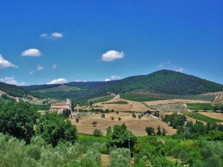 Montalcino-to-Castelnuovo-10
