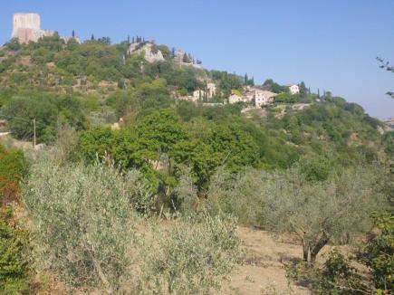 Rocca-dOrcia-to-San-Quirico-1