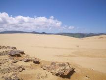 Opononi-Dunes-8